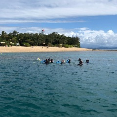 Private Charter Snorkel Tours From Port Douglas - Low Isles Snorkellers