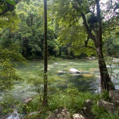 Private Charter up to 16 Guests | Stunning Mossman Gorge