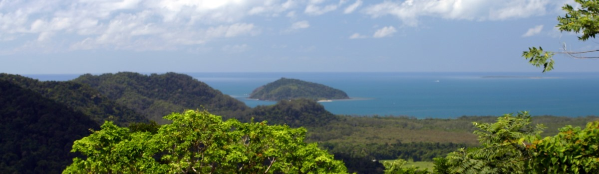 Private Daintree Cape Tribulation Tour