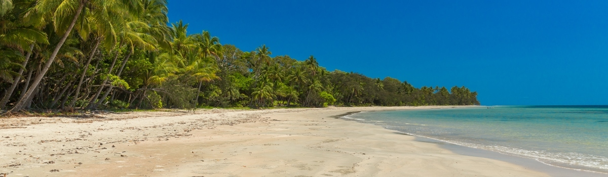 Private Daintree Rainforest & Reef 2 Day Tour