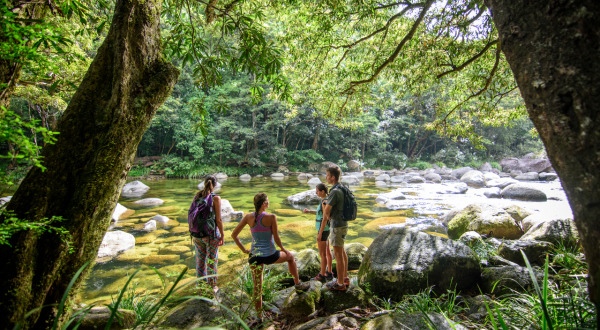 Private Daintree Tour Including Mossman Gorge
