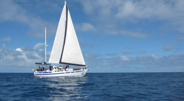 Liveaboard private charter boat Great Barrier Reef Dive & Sail | Ex Cairns