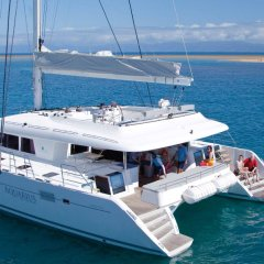 Great Barrier Reef Tour | Luxury Reef Trip From Port Douglas In Tropical North Queensland