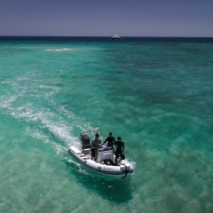 Private Tender to Less Accessible Area of the Great Barrier Reef