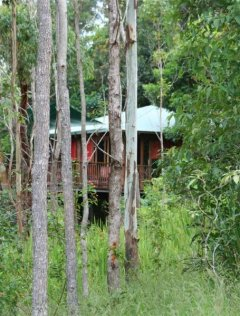 Private Treehouses  - Cairns' Atherton Tablelands Accommodation