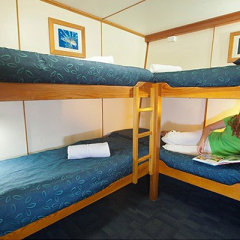 Quad bunk accommodation on liveaboard boat Great Barrier Reef