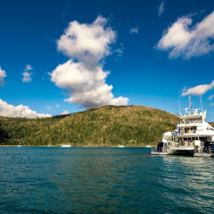 Cairns Private Charter Luxury Yacht | From Port Douglas To The Whitsundays