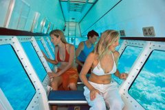 Quicksilver Outer Barrier Reef Pontoon activities