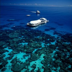 Aerial View Quicksilver pontoon on the Great Barrier Reef