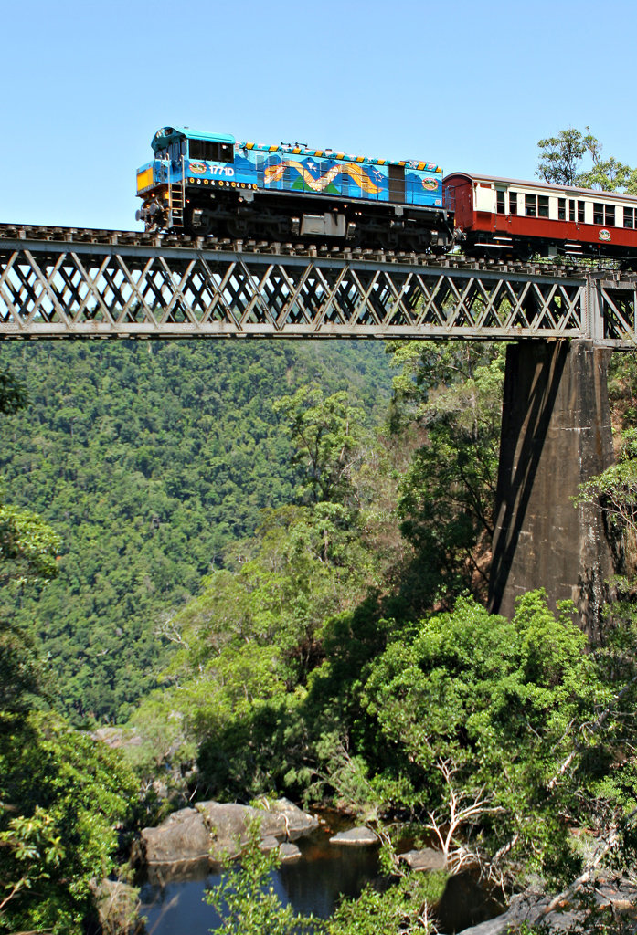 Kuranda Rainforest Region Tour