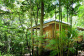 Eco Resorts Cairns - Rainforest Deluxe Eco Accommodation | Jungle Walk Bungalow | Thala Beach Nature Reserve, Port Douglas