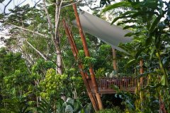Rainforest Treehouse on the Cairns Atherton Tablelands