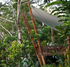 Rainforest Retreat Treehouse on the Cairns Atherton Tablelands