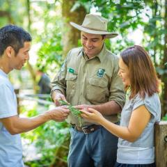 Ranger-guided boardwalk tour on Kuranda tour in Cairns