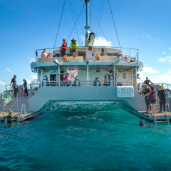 Rear Deck - Brand New Reef Vessel Cairns