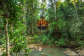 Reconnect in Nature in a private Rainforest Treehouse