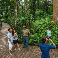 Cheapest Day Tour To Kuranda From Anywhere In Cairns - Skyrail Guided Walk