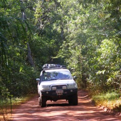 Red Tracks Through The Scrub Cairns to Cape York 4WD Tour