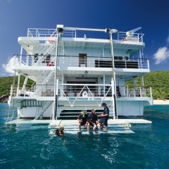 Snorkel or Scuba dive onboard your Great Barrier Reef Cruise Ship