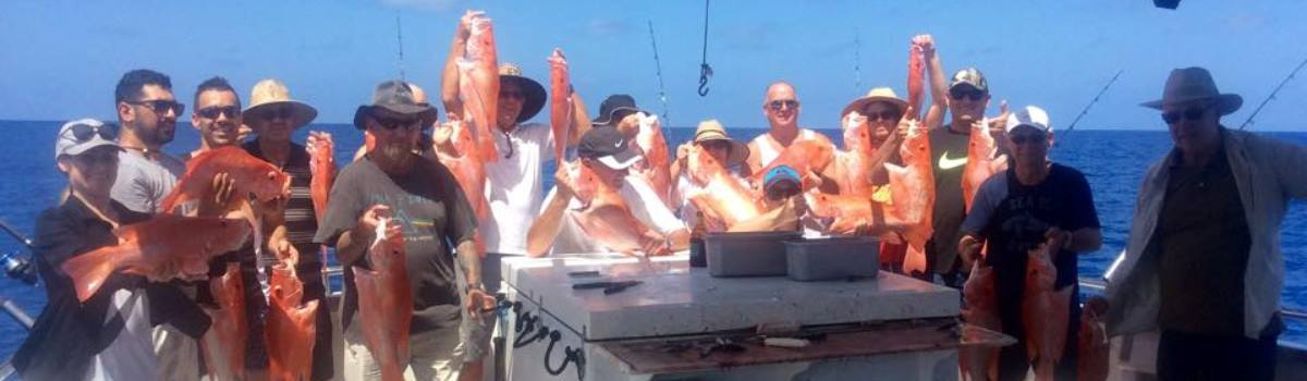 Port Douglas Reef Fishing | Tropical North Queensland Australia