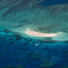 Reef Scenic Flight | Fly Over Michaelmas Cay | 45 Minute Flight
