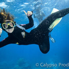 Snorkel Cairns | Great Barrier Reef Tour