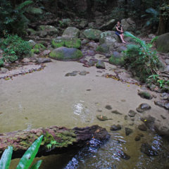 Mossman Gorge Relaxing Day Tour Only 20km From Port Douglas