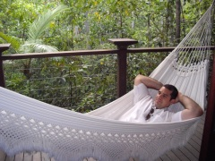 Relax In Tropical North Queensland | Stay In The Daintree Rainforest | Silky Oaks Lodge & Spa