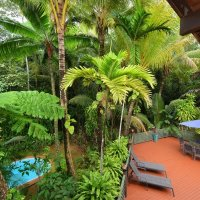 Relax on the Deck in your private Holiday Home amongst the Daintree Rainforest