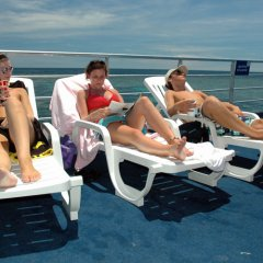 Relax on the sun deck on Reef Magic pontoon