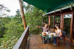 Relax on your Private Balcony in your Rainforest Treehouse  - Cairns' Atherton Tablelands Accommodation
