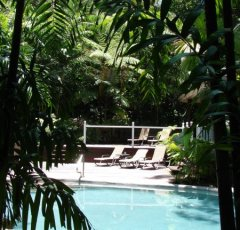 Relax, Unwind in Palm Cove at  Palm Cove Tropic Apartments