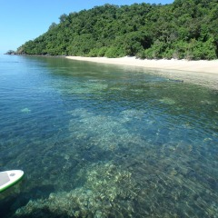 Relaxing Low Isles | Explore The Clear Waters Of Low Isles | Full Day Trip To Low Isles