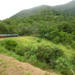 Ride the historic Kuranda Scenic Railway