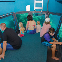 Ride the semi-submersible submarine on the Great Barrier Reef tour