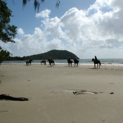 Riding Horses on the Beach Cape Trib