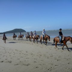 Riding Horses on the Beach Cape Tribulation Cairns