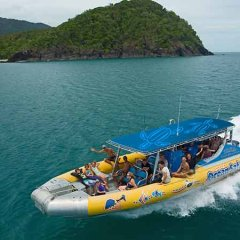 Fast Exhilarating Ride To The Great Barrier Reef