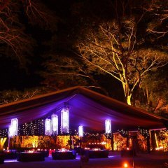 Romantic Dining Couples Dining Port Douglas