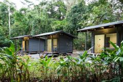 Safari Lodge Cape Tribulation - Safari Hut Accommodation