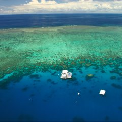 scenic helicopter flights over the Great Barrier Reef in Cairns Queensland Australia