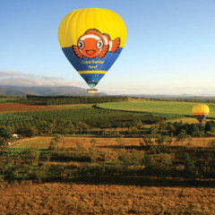 Scenic hot air balloon flights from Cairns