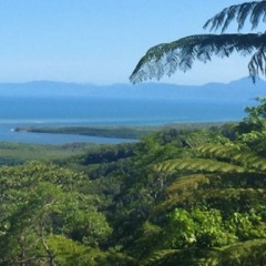 Scenic views over Cape Tribulation