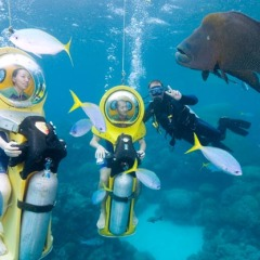 Scooba Doo from Cairns on the Great Barrier Reef in Australia