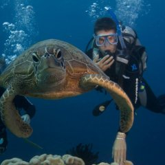 2 Day 1 Night Private Sailing Reef Trip | Great Barrier Reef Australia | Scuba Dive With Sea Turtles