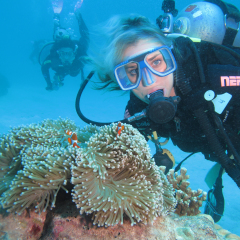 Scuba diver on the outer Great Barrier Reef off Cairns