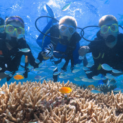 Scuba divers on a Great Barrier Reef  tour from Port Douglas