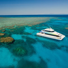 Scuba diving Cairns | Great Barrier Reef Tour