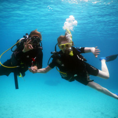Scuba Diving In Papua New Guinea | 12 Night Cruise