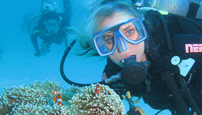 Cairns tours attractions the cairns port douglas tour specialists - Best place to dive the great barrier reef ...